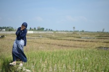 farming land in Lampung
