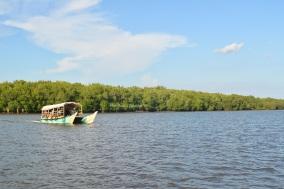 perahu, laut dan mangrove
